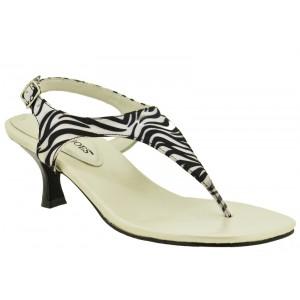 Annie Venice Zebra at DesignerShoes.com