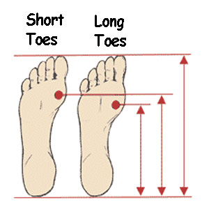 Each foot is the same length, but the BALL of the foot hits a very different place in a shoe.